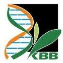 KBC (1).jpg