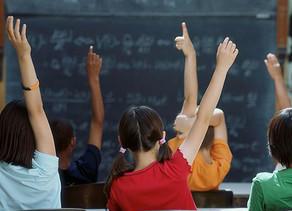 Será que é mesmo importante ir à escola?