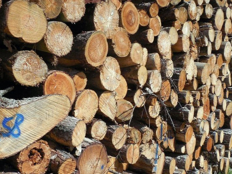 Do you know where your timber and paper come from?