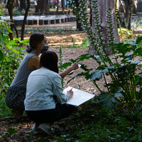 Drawing in Nature - With the Plants 1.JP