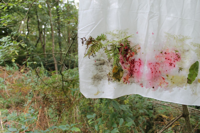 Woodland Printmaking, Limnerslease Residency, collaborative artists in residence with Charlie Betts, at WattsGallery Artist Village, 2017