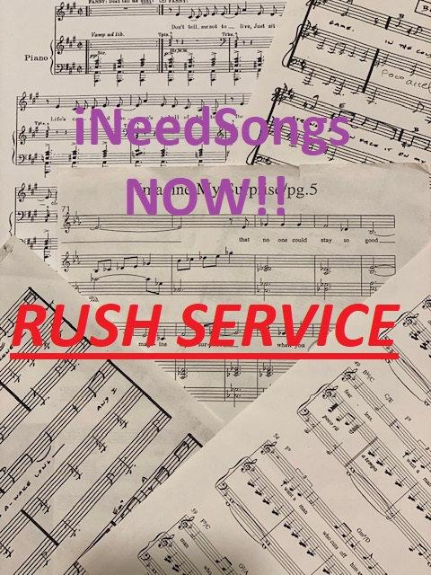 iNeedSongs - RUSH SERVICE (24 HOURS)
