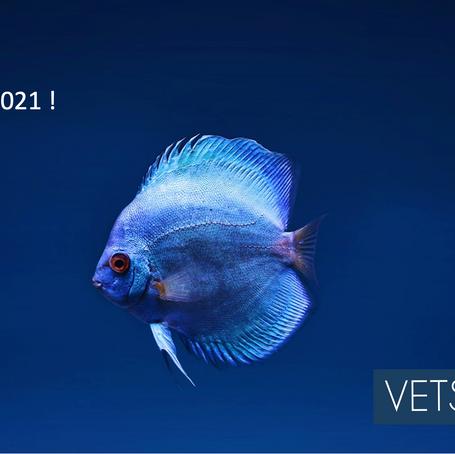 Vets4Vets vous souhaite une belle année 2021 !