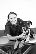 veterinaire Brignoles.jpeg