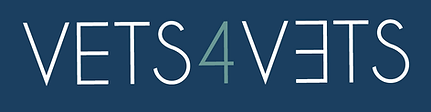 Logo v4v.PNG