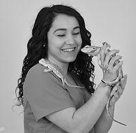 Vétérinaire la Valette
