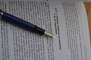 Avocat Propriété Intellectuelle Nice, Sophia Antipolis, Monaco, 06