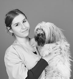 veterinaire Ollioules
