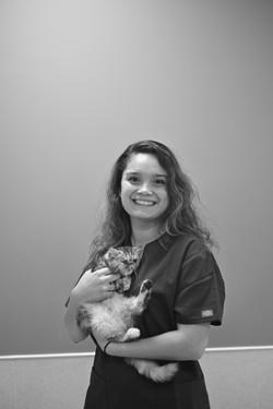Vétérinaire le pradet