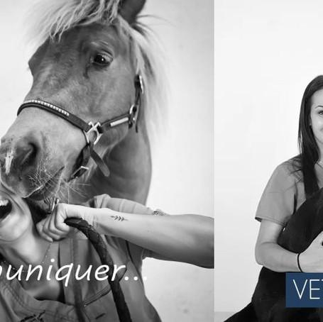Vets4Vets renforce son équipe de communication