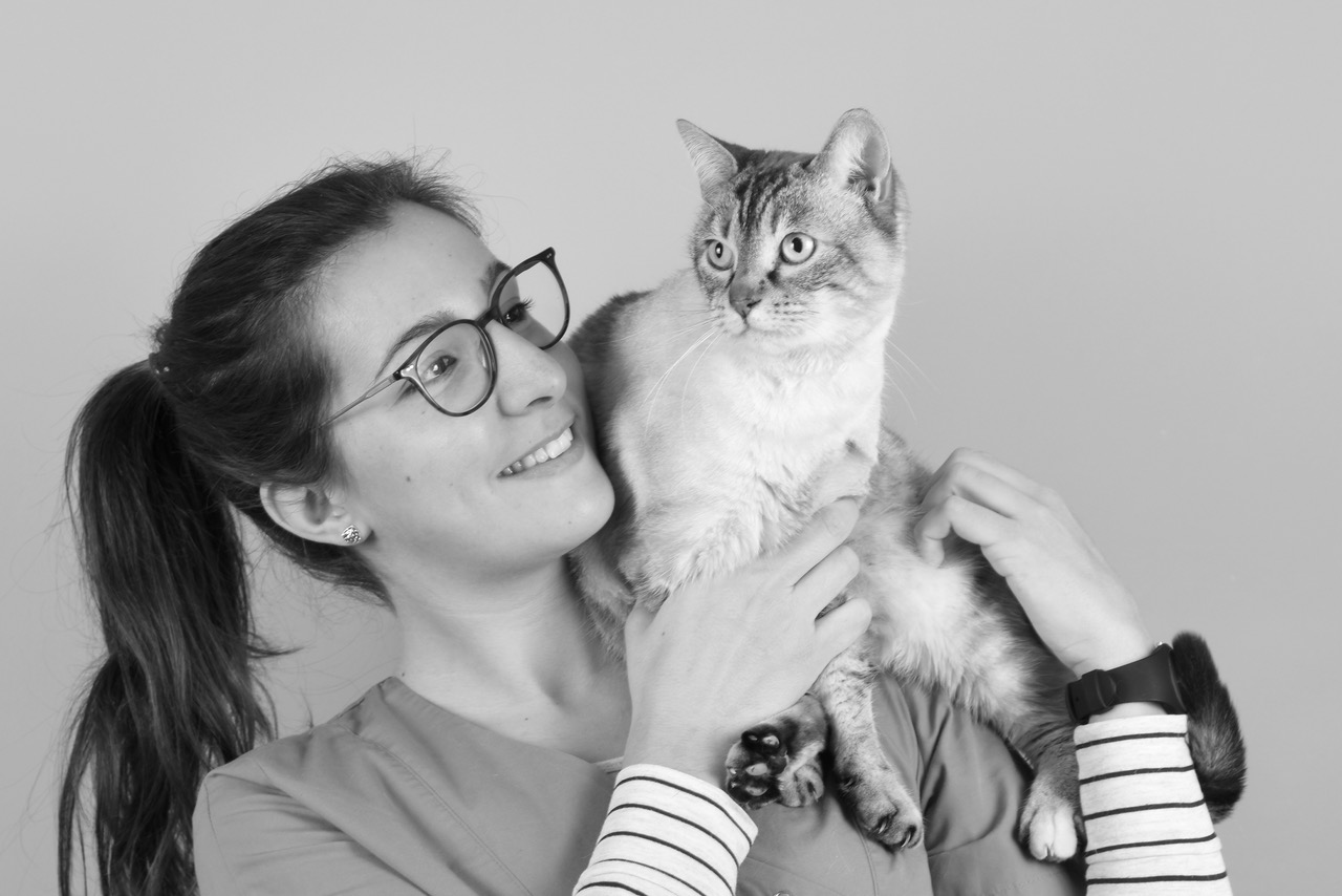 Vétérinaire le Pradet, la Garde, La