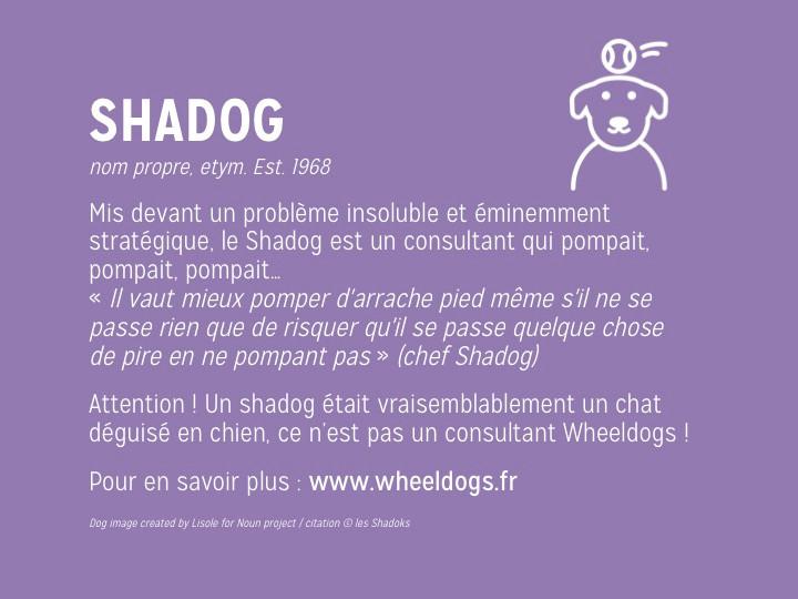 Wheeldogs : conseil ou action ?