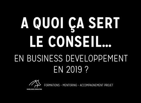 A quoi ça sert le Conseil... en Business Développement en 2019 ?