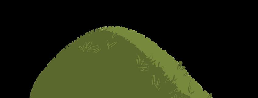 A green bush