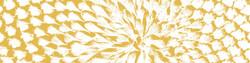 solsikker link 2
