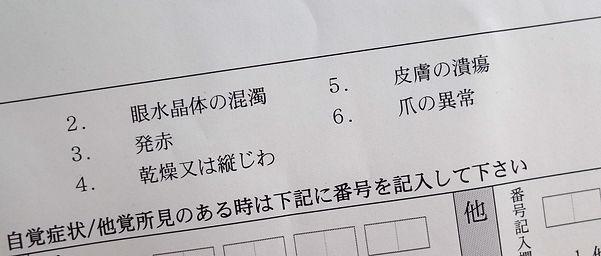 FUKUSHIMA PROJECT.jpg