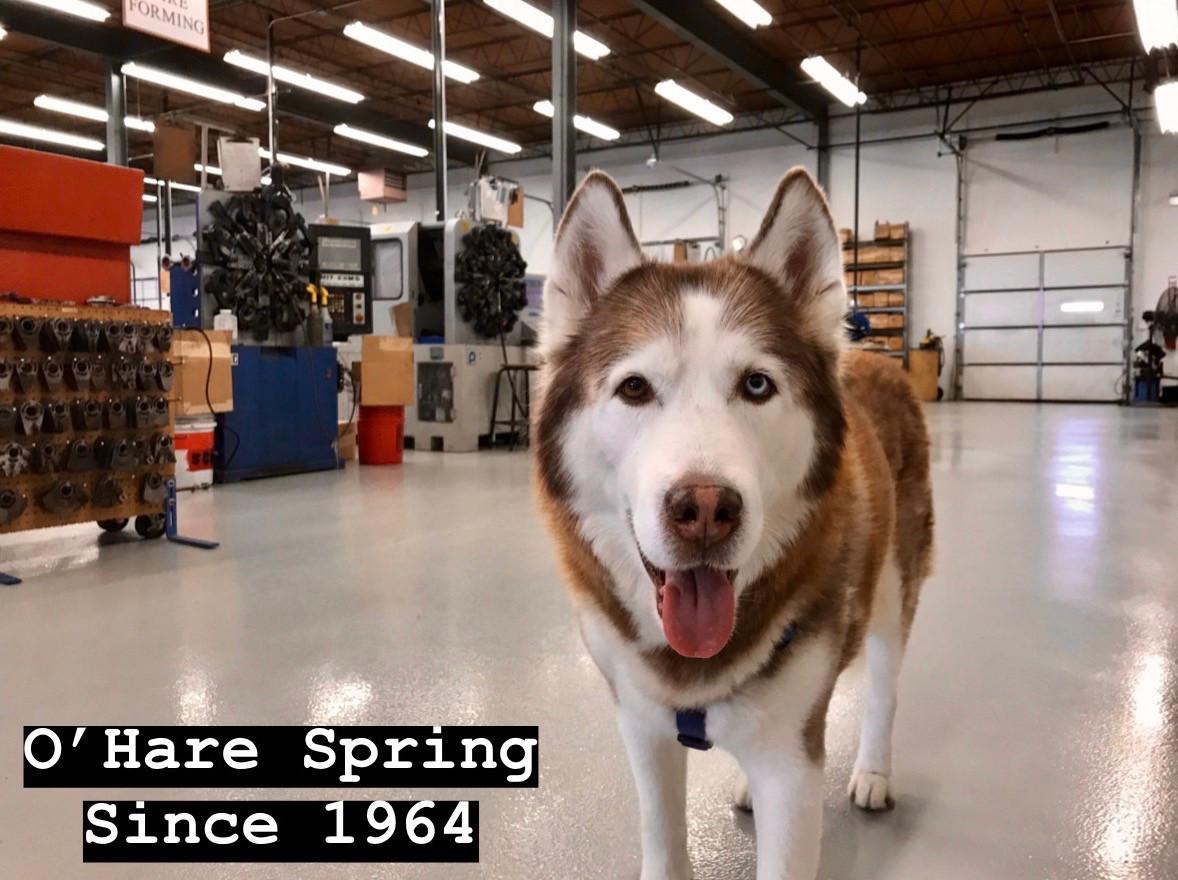 Stickers | Ohare Spring Company