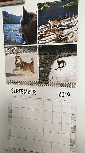 12-Month 2020 Wall Calendar