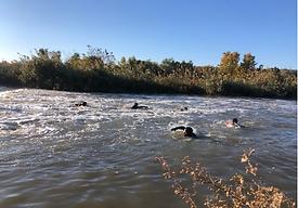 Nadando Tajo.png
