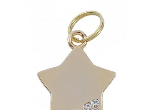 Luxury Star Pet ID Tag (Gold)