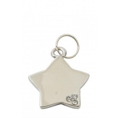 Luxury Star Pet ID Tag (Silver)