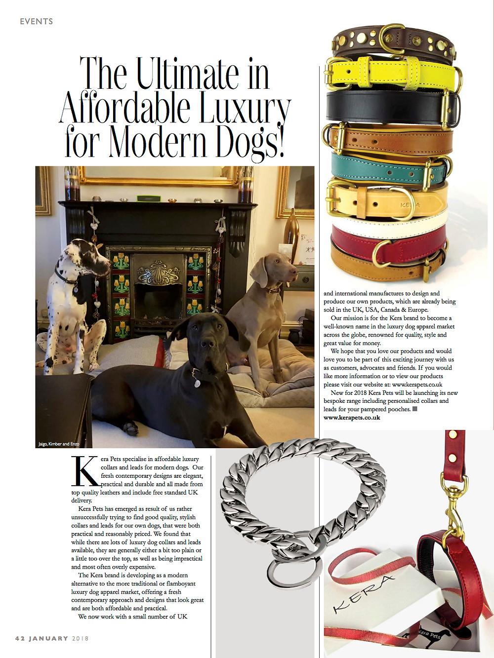 Luxury Dog Collars & Leads