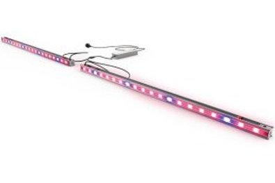DUTCH LIGHTING - Diode Series 96w Interlight Fixture