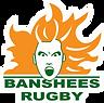 banshees logo