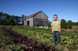 farm pictures 008.jpg