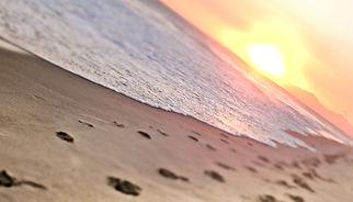 xperiencerio instagram bara beach