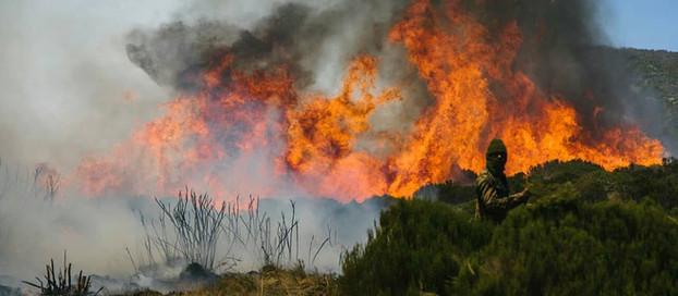 Mount Kenya Is Burning!