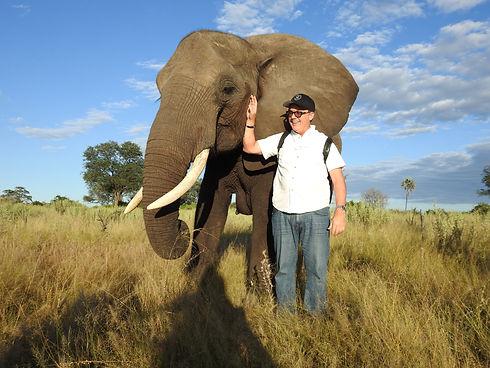 abu camp - ss w: elephant (kathy) from a