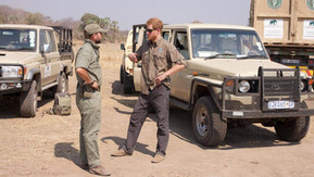 Elephant Cooperation Congratulates Prince Harry on His Appointment to President of African Parks and