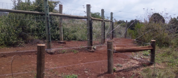 Mount Kenya Trust Fencing Project