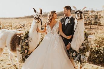 temecula wedding (491 of 1185).jpg