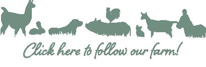 follow_farm.png