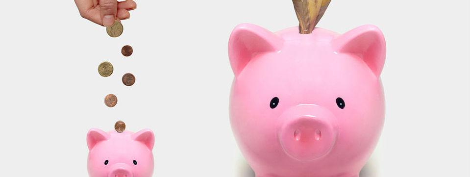 piggy banks with cash - narrow.jpg
