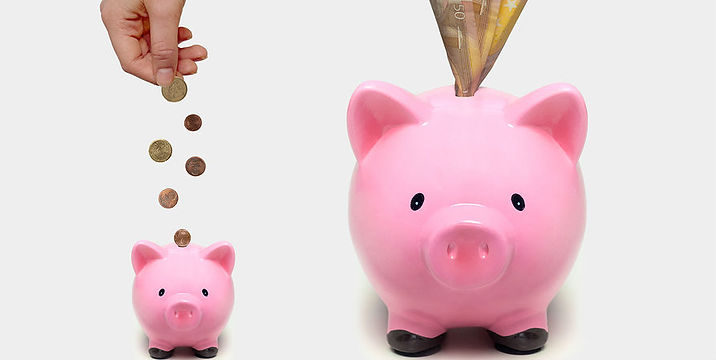 piggy banks with cash - narrow.jpg