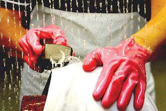 arai-cta-hands.jpg