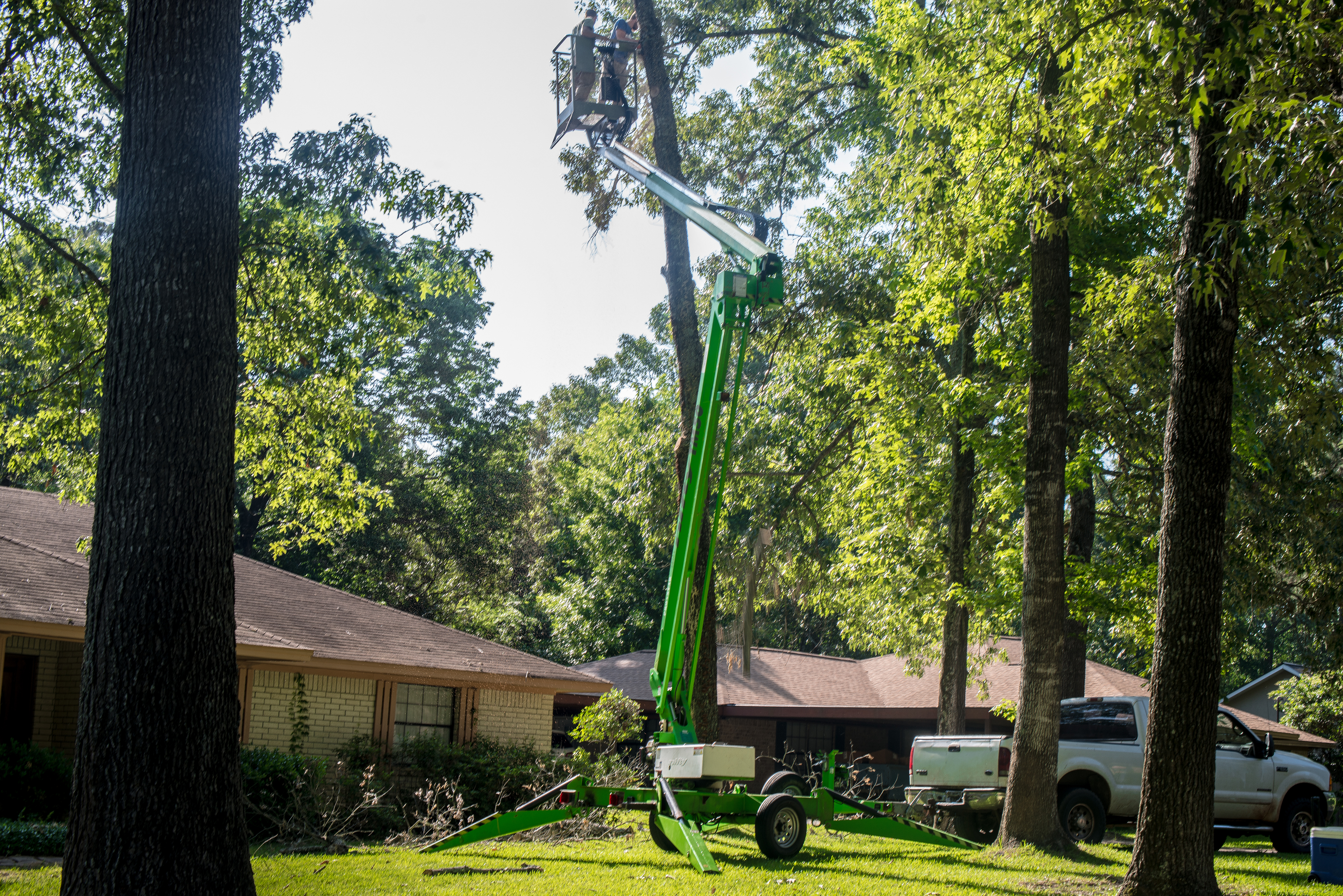 Trudeau Tree Service | East Texas