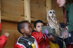 Kearni strokes an owl with Mohammed at Truro Prep