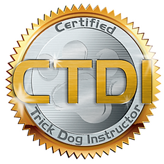 Dog Puppy Training Classes Belleville Trenton Ontario Trick Scenting Scent Detection Behaviour Modification Dog training | Quinte Canine