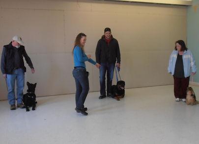 Dog Puppy Training Classes Belleville Trenton Ontario Train Trick Scenting Scent Detection Canine Quinte West