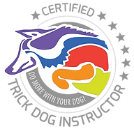 CTDI logo-head.png