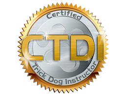 Dog Puppy Training Classes Bellevill