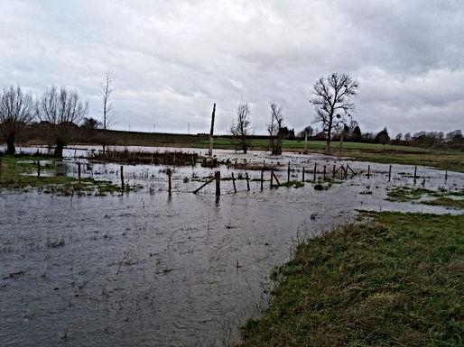 Er komt een overstromingszone aan de Winterbeek in Romershoven