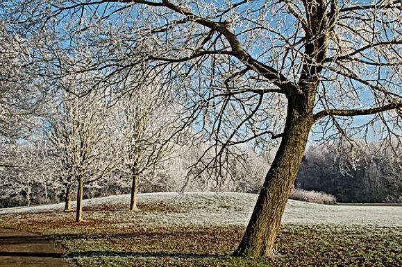 WEERBERICHT: Zaterdag nog warm, vanaf zondag gevoelig kouder