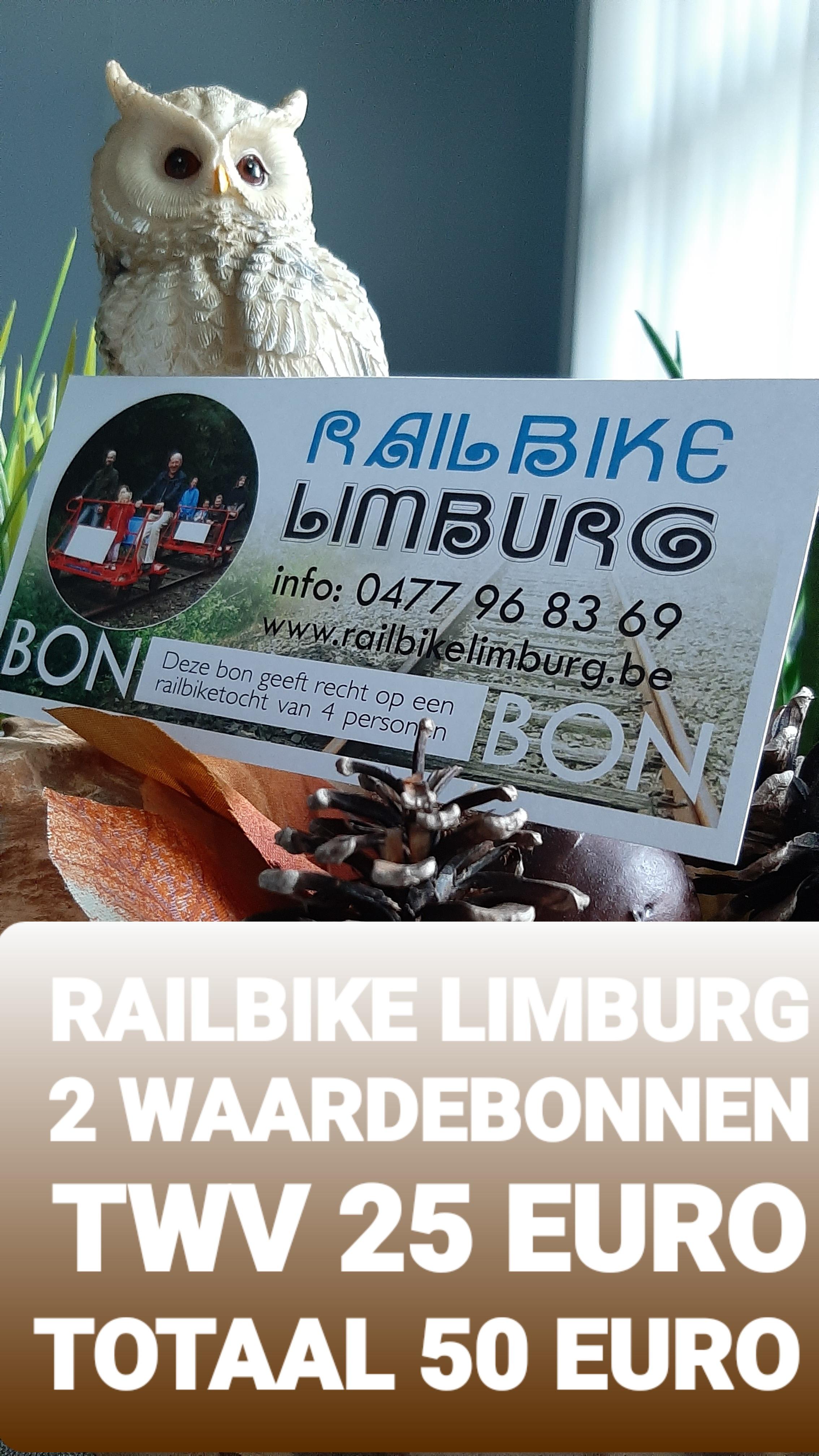 Railbike Limburg
