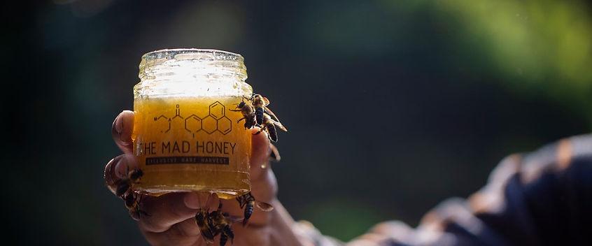 Mad Honey.jpg