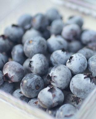 Proberries_fruta_017.jpg